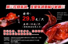 粤周记宣传单背面