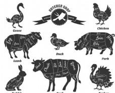 卡通动物肉块注释矢量