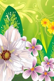 绿色花纹淡粉色花卉