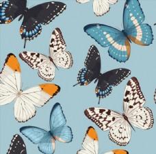 蝴蝶无缝背景矢量素材