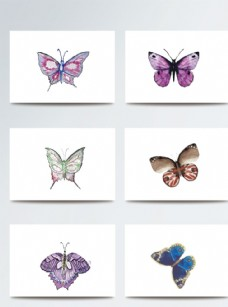 彩色逼真可爱蝴蝶素材