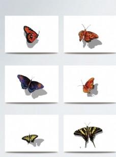彩色立体蝴蝶带阴影素材