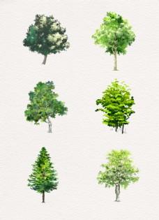 绿色单颗树木
